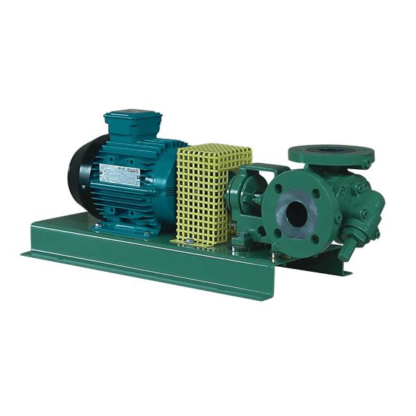 Pompa victor pumps zębata seria R